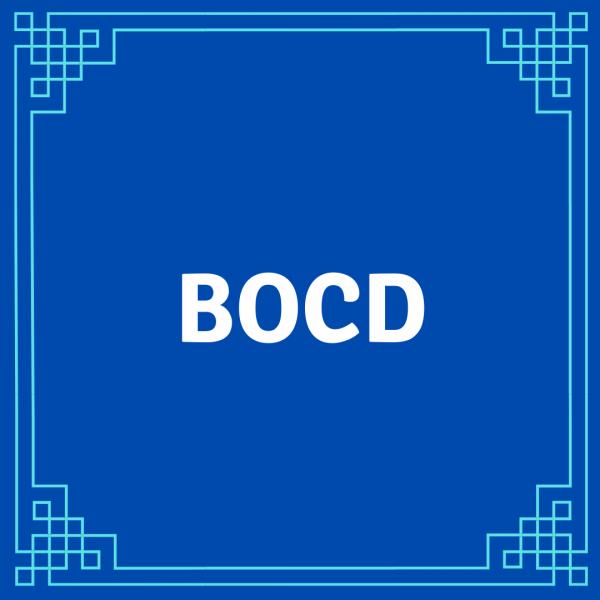 New BOCD